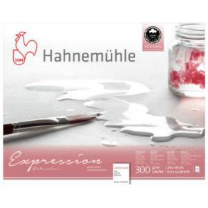 Papier Aquarelle Expression Hahnemühle